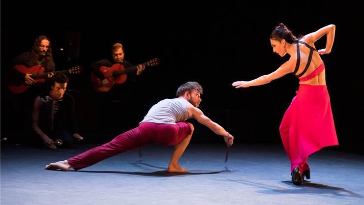 Zwei Choreografien von Brigitta Luisa Merki und David Coria machen «Mosaico» in der Alten Reithalle Aarau zu einem Erlebnis.
