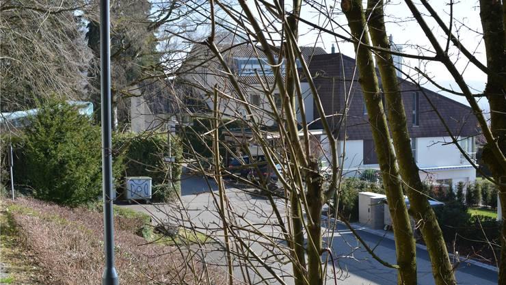 Am Waldrand, auf dem Parkplatz beim Geroldswiler Moos, spielte sich die Tat ab. DEG