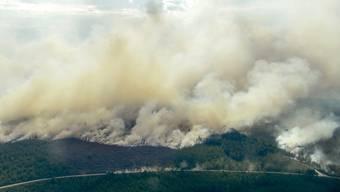 Eine Luftaufnahme des Waldbrandes rund um Ljusdal.