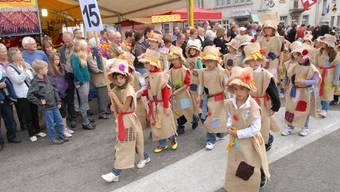 Impressionen vom Winzerfest in Döttingen