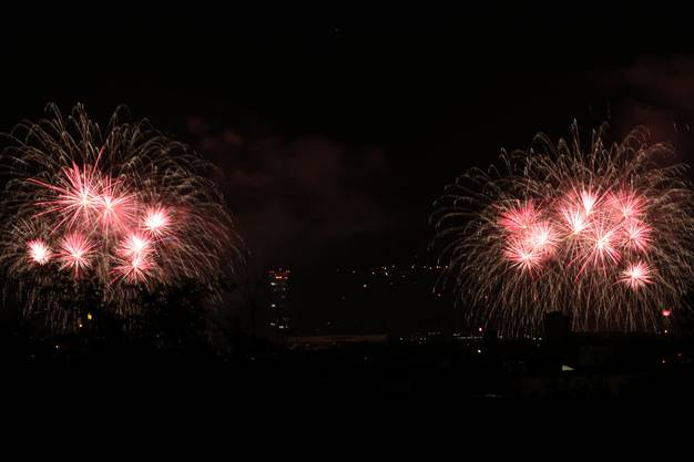 Feuerwerk am Rhein von Allschwil aus