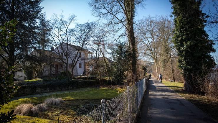 In diesen Gärten direkt neben dem Philosophenweg stiessen Bauarbeiter 1934/1935 auf mehrere Gräber und ein Fundament.Pascal Meier
