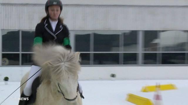 Ski, Abfahrt und Pferde