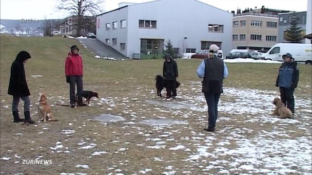 Hundekurse bleiben weiterhin obligatorisch