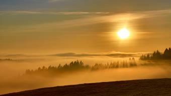 Über dem Nebel 2015