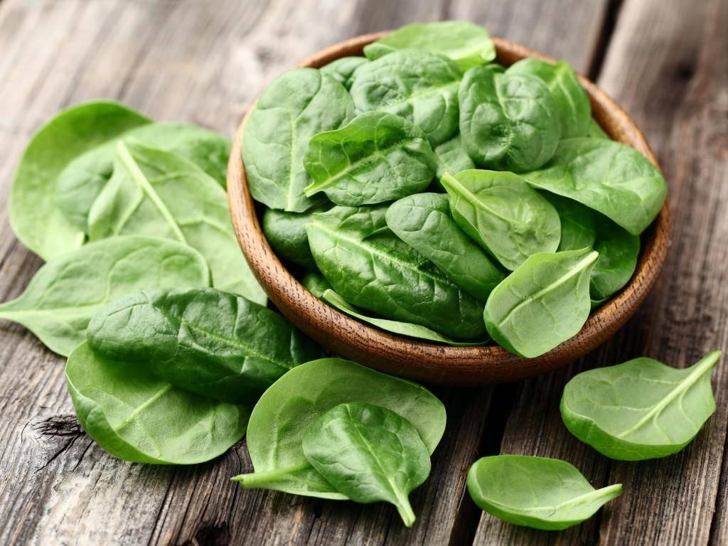 Spinat kann man ab März wieder ohne schlechtes Gewissen kaufen