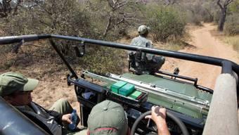 Sicherheitspersonal auf Nashorn-Tour in Südarfika (Symbolbild)
