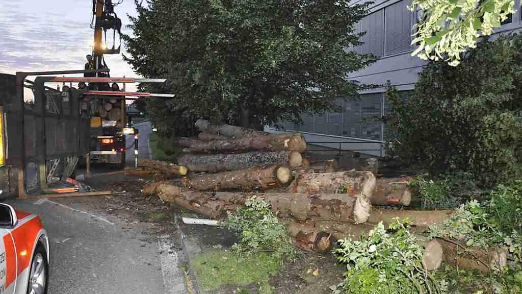 Holzstämme mit einem Gewicht von 15 Tonnen landeten in Oensingen SO auf der Strasse und in einem Vorgarten.