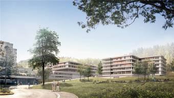 Auf der Visualisierung sind drei von vier Psychiatrie-Projekten zu sehen: Rechts der Neubau G, in der Mitte der neue Anbau F, links das zu sanierende Gebäude B.