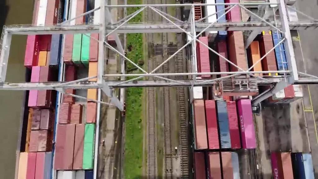 Zollkontrolle: Der Hafenzöllner