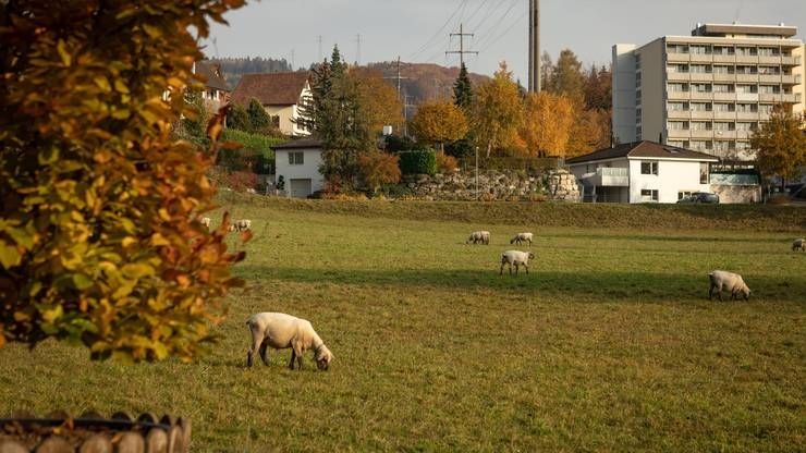 Vorschlag Gässliackerstr./Mühleweg, Obersiggenthal, Parzellen 303 und 304.