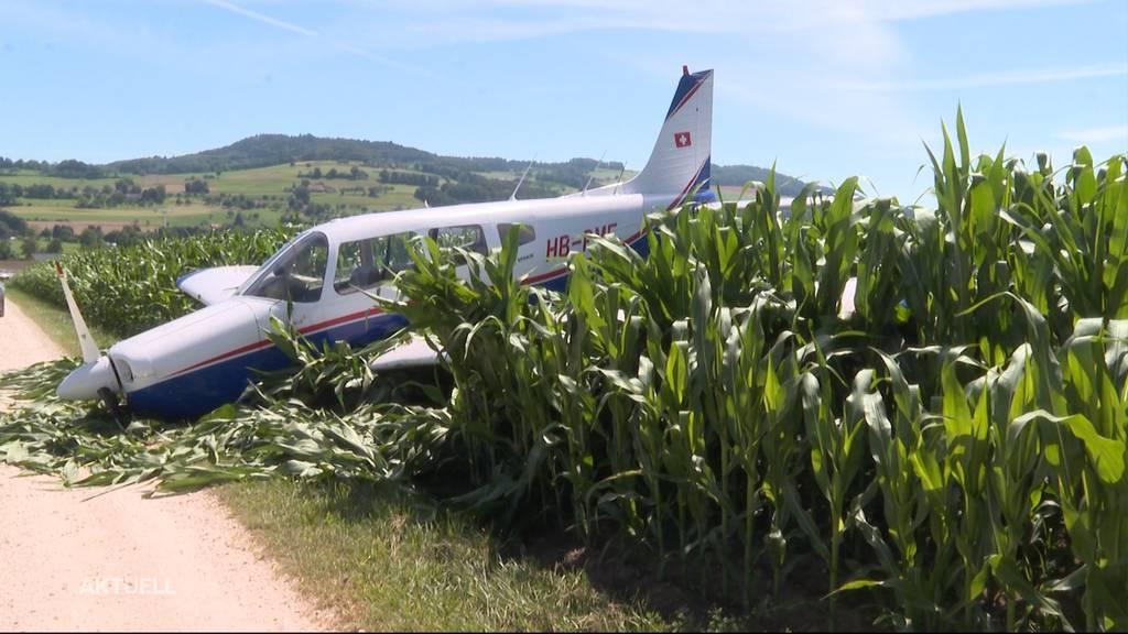 Notlandung in Reitnau: Kleinflugzeug stürzt in Maisfeld