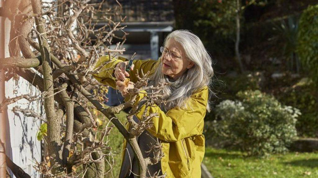 Schweizer und Schweizerinnen neigen dazu, auch im Alter in ihren angestammten Wohnverhältnissen zu verharren. Ein Drittel der über 65-Jährigen leben in Einfamilienhäusern und ziehen erst in kleinere Wohnungen um, wenn Gartenarbeit und Treppensteigen zu mühsam werden. (Archiv)