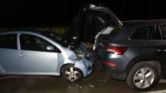 Nachdem sie mit einem Reh kollidiert war, das dabei getötet wurde, hielt sie das Fahrzeug am Strassenrand an.