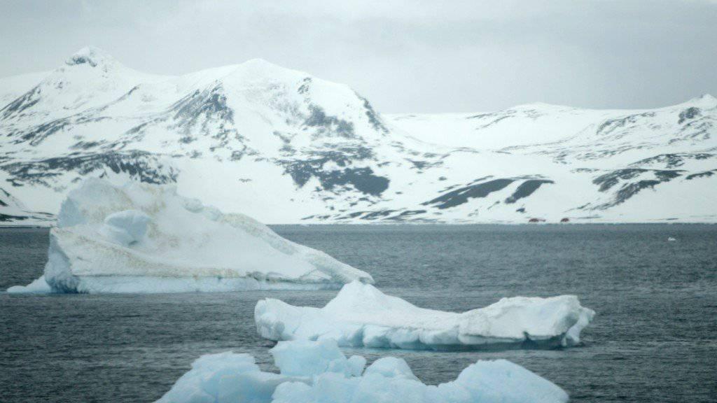 Die Tiefsee in den Polarregionen hatte vor 100 Millionen Jahren wohl keine deutlich wärmere Temperatur als heute. Die bisher angenommene Wärmeperiode könnte somit gar nicht existiert haben. (Archivbild)