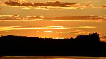 Sonnenuntergänge am Hallwilersee