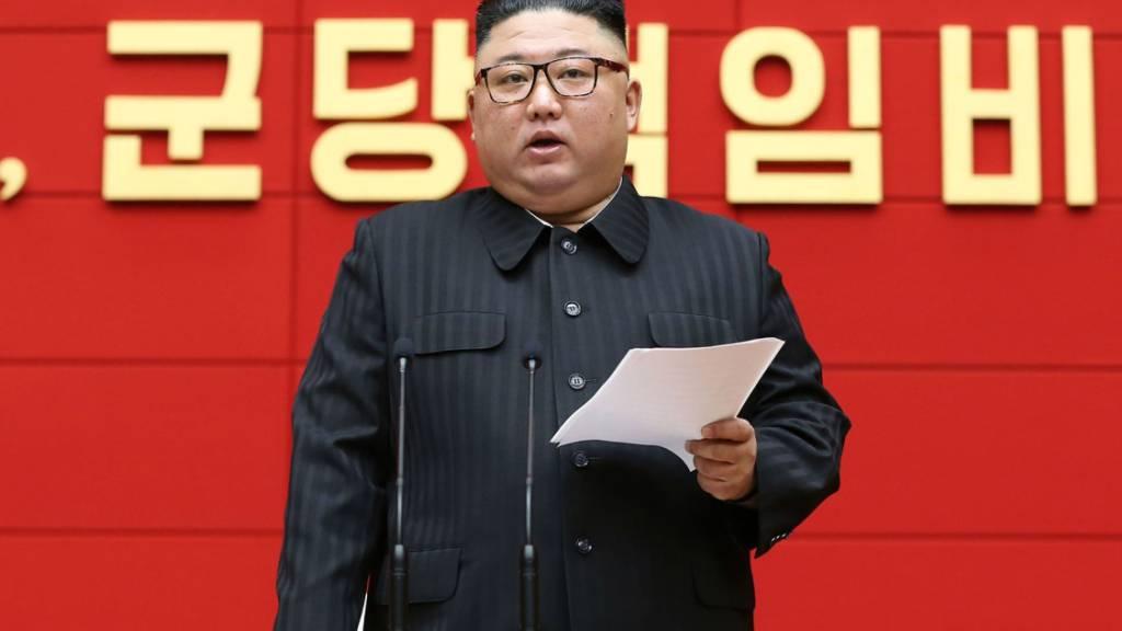 Experten: Nordkorea will möglicherweise erneut Plutonium gewinnen