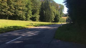 Vom Montag, 17. August 2020, bis am Mittwoch, 19. August 2020, ist die Kantonsstrasse von Buus nach Hemmiken für den Verkehr gesperrt.