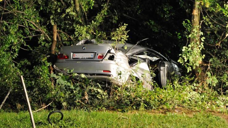 Der total demoliert BMW in der Baumgruppe