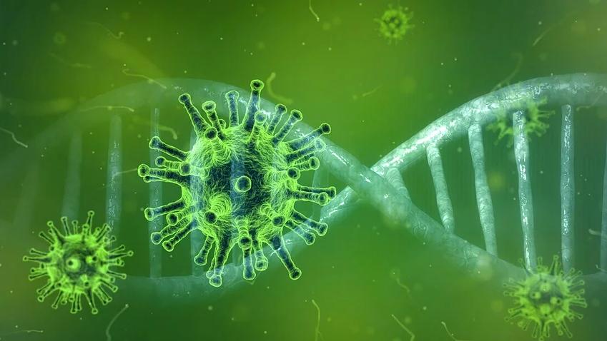 70 Tote durch Coronavirus in der Schweiz