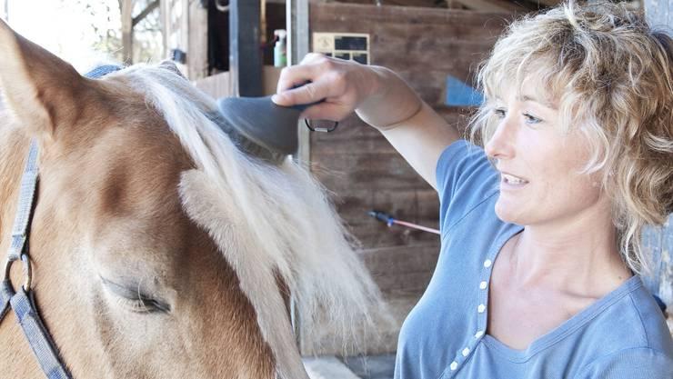 Zwischendurch wird Susanne Hochuli gewiss mit ihren Pferden anzutreffen sein. (ho)