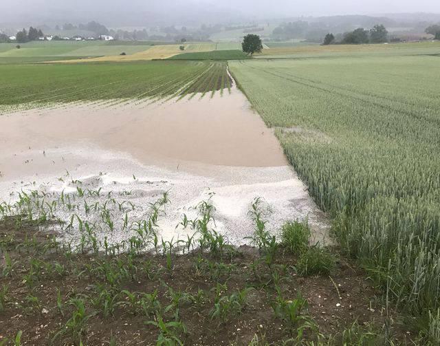 Starker Regen zwischen Selzach und Bettlach überschwemmt Wege und Felder.
