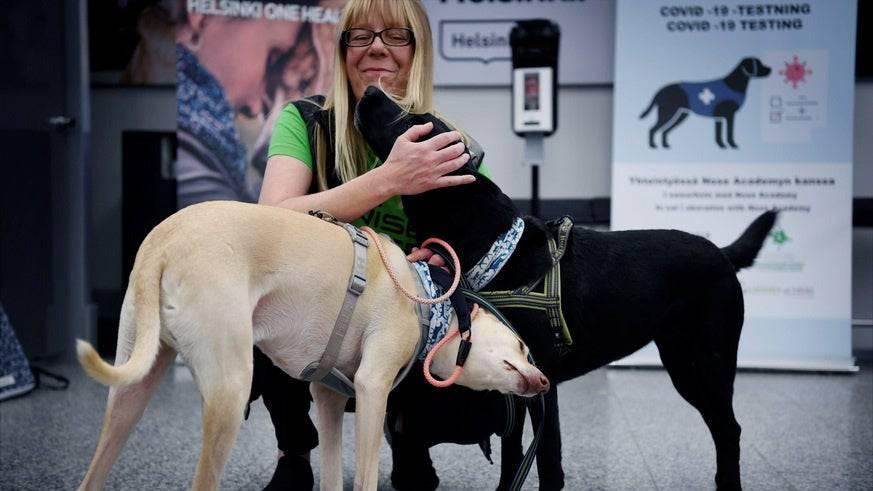 Die Spürhunde K'ssi (links) und Miina mit Trainerin Susanna Paavilainen