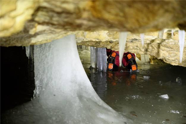 Das Schmelzwasser, das durch Felsritzen dringt, gefriert in der kalten Höhlenluft zu Eiszapfen.