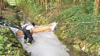Ein Feuerwehrmann errichtet eine Sperre in einem Bach nachdem bei Schweizersholz TG rund 50 Kubikmeter Gülle ausgelaufen sind.