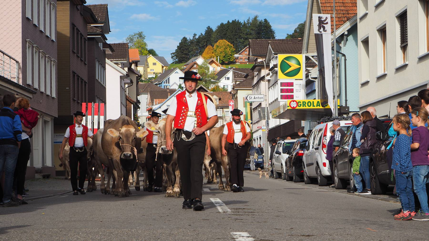 Viehschau 2019