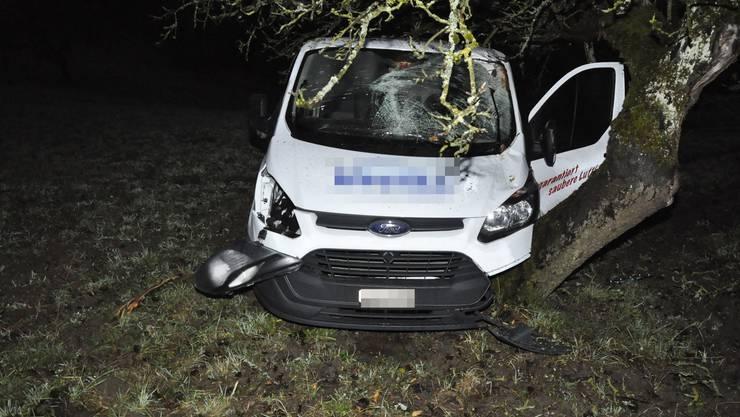 Der Autolenker landete nach dem Ausweichmanöver im Baum.