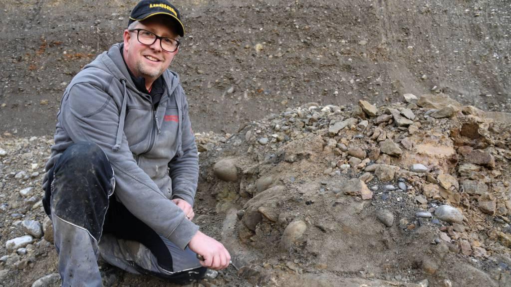 Mammut-Zahn Nummer 5 in Eschenbach gefunden