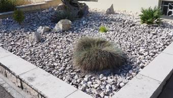 Steingärten, Schottergärten oder auch Steinwüsten: Städte heizen sich aufgrund versiegelter Böden und geringer Vegetation stärker auf.