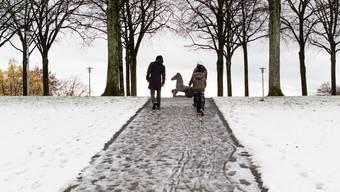 Erster Schnee im Flachland