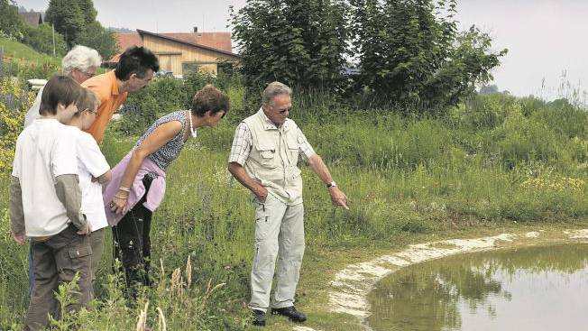 Karl Hirt erklärt Besuchern die Tierwelt im grossen, mit Stabilitkalk abgedichteten Teich. Foto: Peter Siegrist
