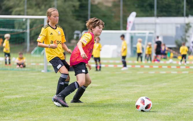 Der FC Küttigen organisierte ein Fussballcamp für Junioren. (7. August 2018)