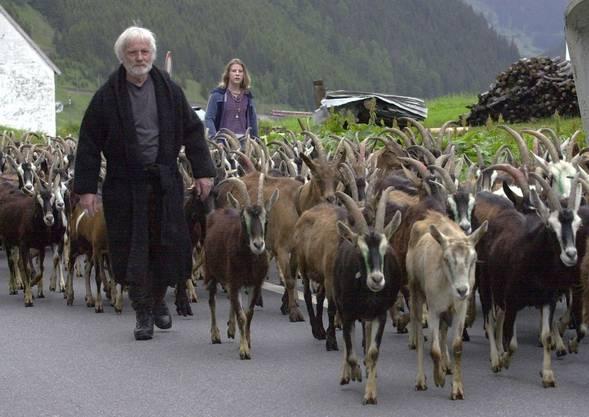 Pfarrer Ernst Sieber beim Alpaufzug auf die Alp Tschamut,