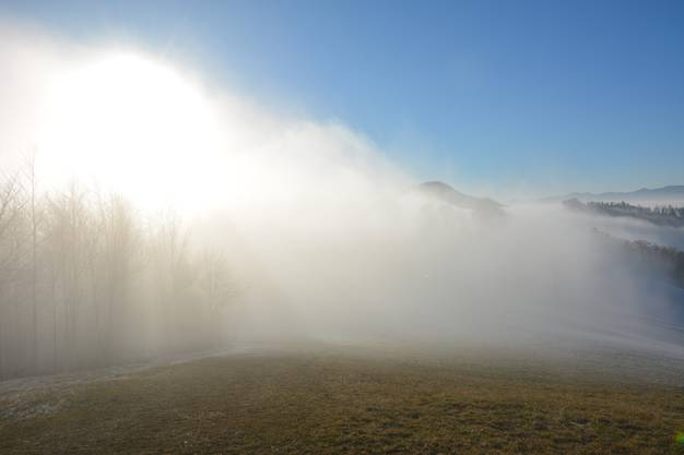 Im Kampf zwischen Sonne und Nebel – Wer sein Vitamin-D-Konto auffüllen wollte, musste in höhere Gefilde aufsteigen.