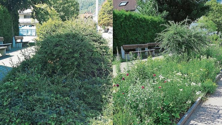 Vor und nach der Umsetzung einer naturnahen Gestaltung in Laupersdorf.