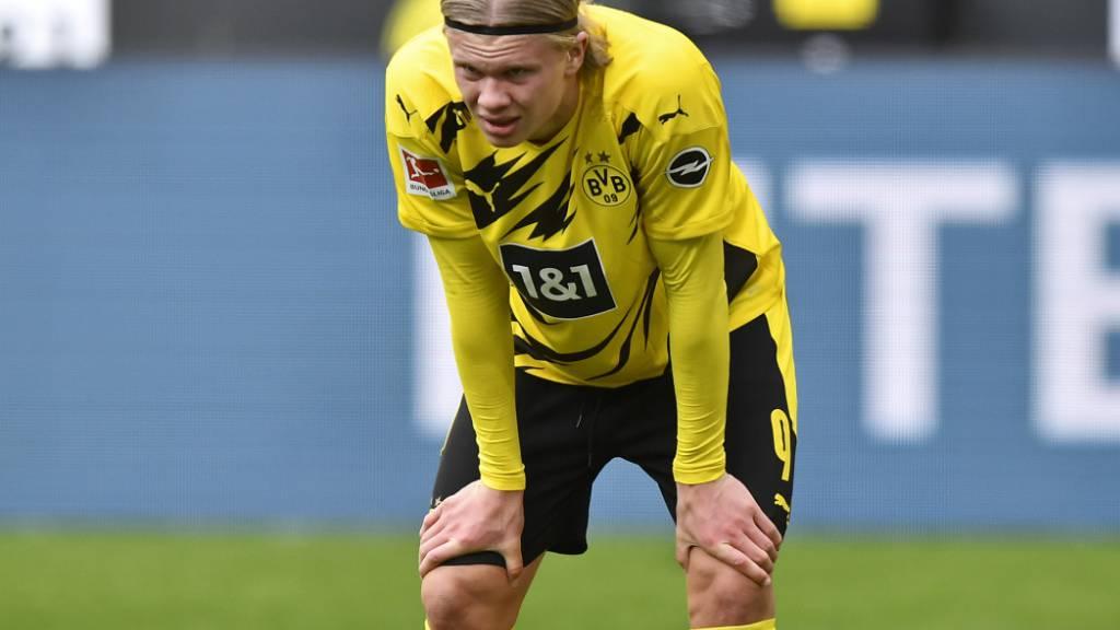 Dortmund zu Gast bei Manchester City - Real empfängt Liverpool