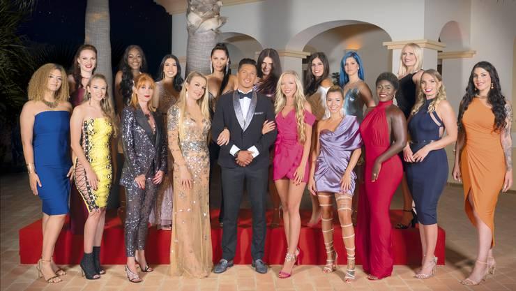 Wer wird das Herz des Luzerner Halb-Brasilianers Alan Wey erobern? Diese Single-Ladys buhlen auf 3+ um die Gunst des Bachelors.