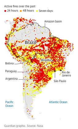 Die Grafik der Zeitung The Guardian zeigt die Waldbrände in Brasilien.
