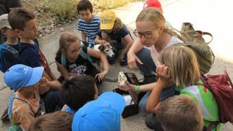 Kursleiterin Denise Steinmann erläutert den 15 Kindern nach dem Besuch eines Dachsbaus das Scharniergelenk dieses Tieres.