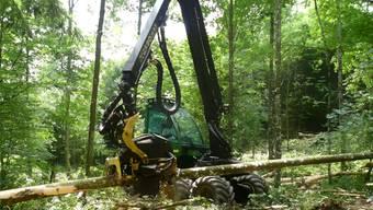 Trotz moderner Maschinen – hier ein Vollernter im Einsatz – schreibt die Mehrheit der Aargauer Forstbetriebe derzeit rote Zahlen. kob/Archiv