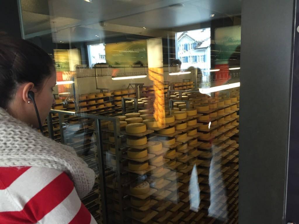 Käse und Wein in der Schaukäserei