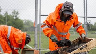 Beschäftigungsprogramme für Sozialhilfebezüger und Asylbewerber gibt es bereits vielerorts. Mit einem Assessment Center will der Kanton Baselland nun die Integration dieser Menschen in den Arbeitsmarkt verbessern.