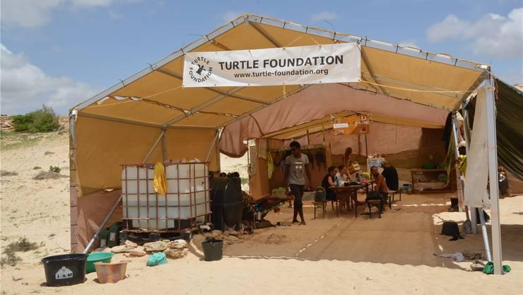 Am Strand von Lacacão hat die Organisation Turtle Foundation eines von fünf Camps eingerichtet. Hiltrud Cordes