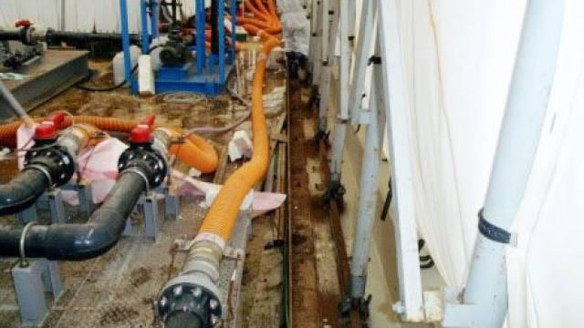 Arbeiter kamen mit radioaktivem Wasser in Berührung (Archiv)