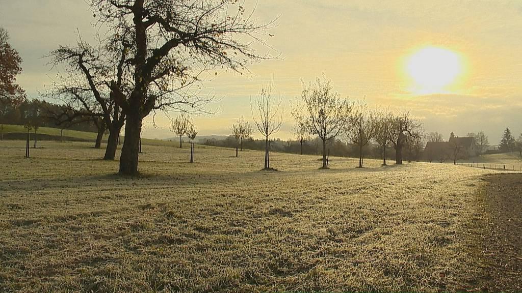Frostiges Erwachen in der Schweiz am Samstagmorgen
