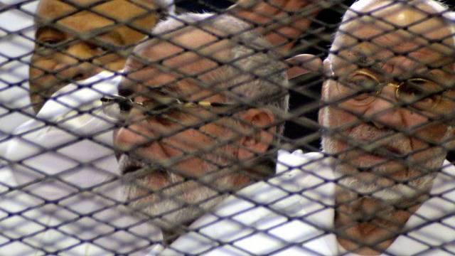 Den Führern der Muslimbruderschft droht die Todesstrafe